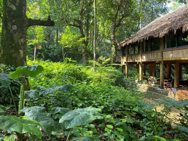 Bán đất nền biệt thự vườn Củ Chi