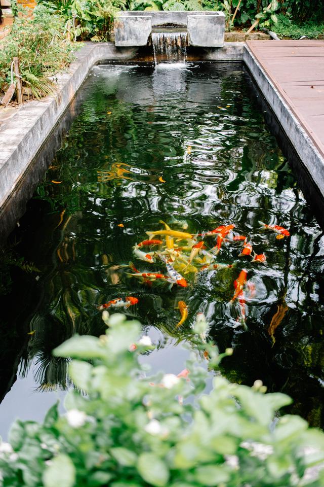 Mở bán dự án biệt thự Vườn Hà Nội